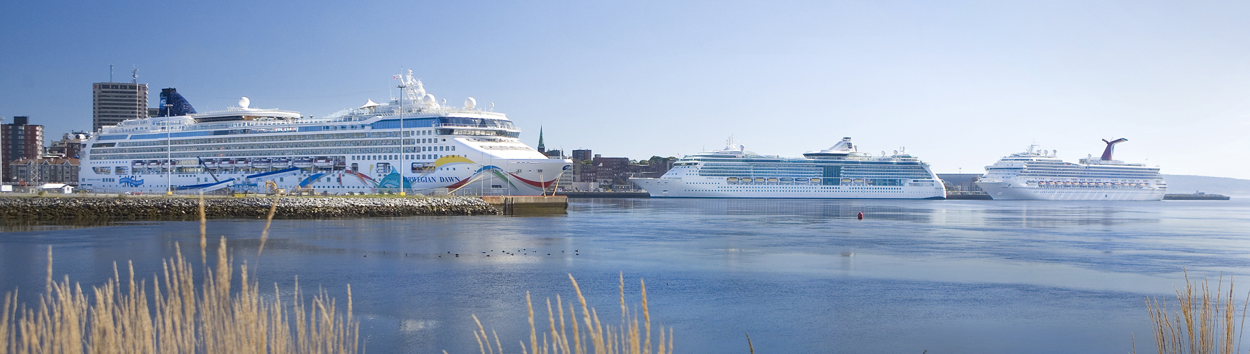 Cruise Schedule Port Saint John - How many cruise ships in port schedule